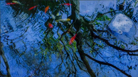 Fish Pond by Sossi Madzounian art print