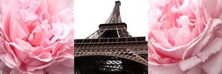Pink Roses Eiffel Tower by Emily Navas art print