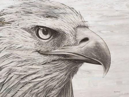 Eagle landscape by Marie-Elaine Cusson art print