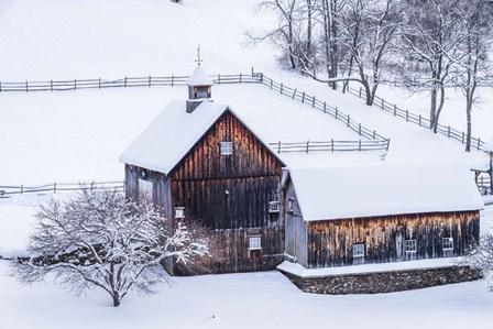 Snow Day on the Farm by Brenda Petrella Photography LLC art print