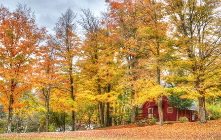 Autumn Cottage by 5fishcreative art print