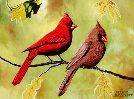 Cardinals by Mike Bennett art print