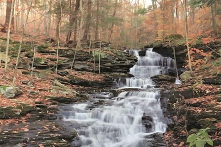 Waterfall Steps at Pigeon Run by Lori Deiter art print