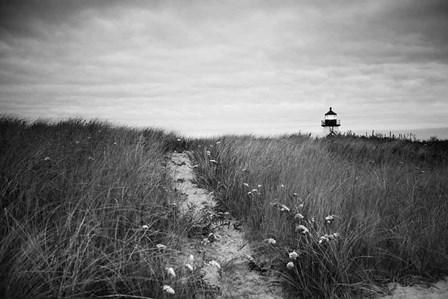 Nantucket Light by Aledanda art print