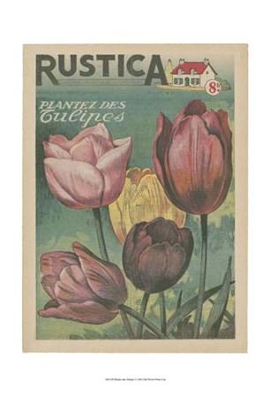 Plantez Des Tulips art print