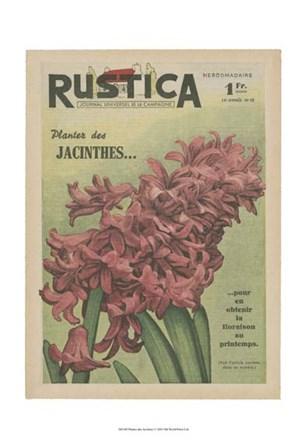 Plantez Des Jacinthes art print