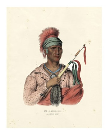 An Ioway Chief by Mckenny & Hall art print
