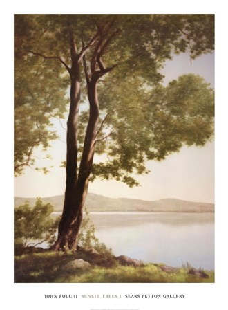 Sunlit Trees I by John Folchi art print