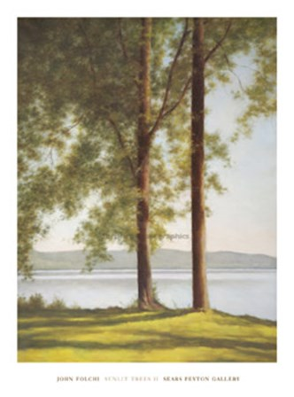 Sunlit Trees II by John Folchi art print