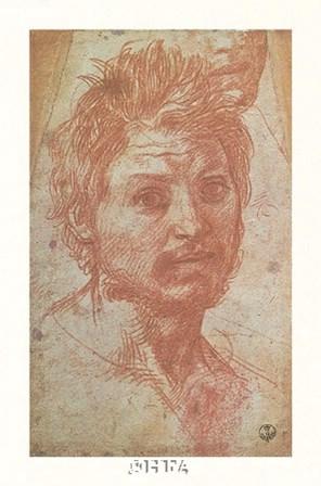 Head of a Young Man by Andrea Del Sarto art print
