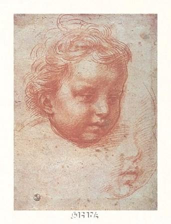Head of a Child by Andrea Del Sarto art print
