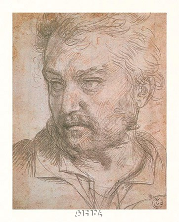 A Young Man by Andrea Del Sarto art print