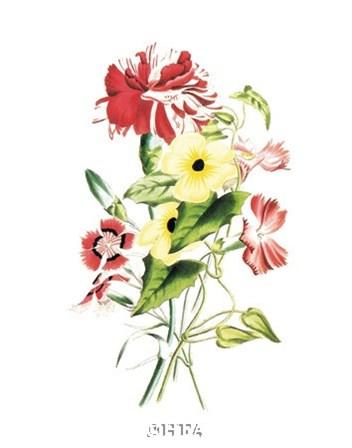 Flowers (Untitled) - Bouquet by Louise Anne Twarmley art print