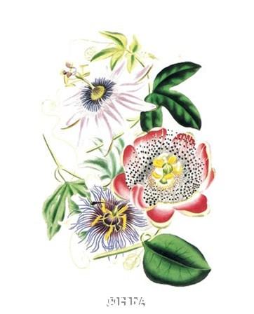 Flowers by Louise Anne Twarmley art print