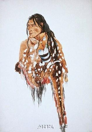 Ihkas-Kinne, Siksika Blackfeet Chief by Carl Bodmer art print