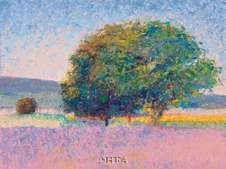 Trees in Provence by Gail Wells-hess art print