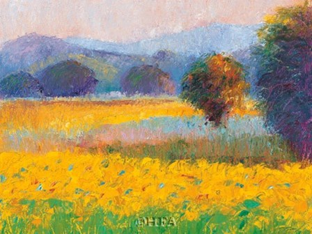 Sunflowers in Provence by Gail Wells-hess art print