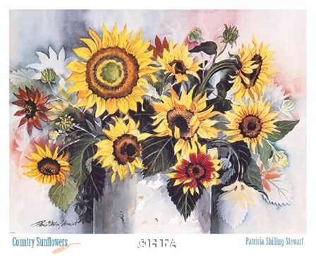 Country Sunflowers by Patricia Shilling-Stewart art print