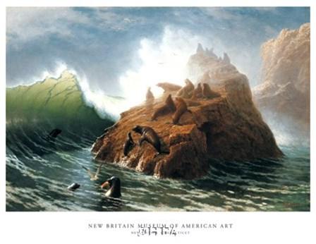 Seal Rock (detail) by Albert Bierstadt art print