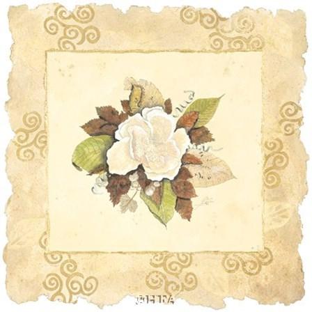Victorian Magnolia by George Caso art print