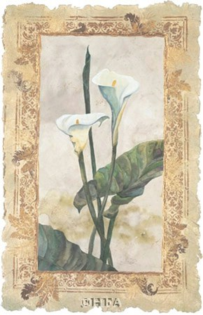 Calla Lily by George Caso art print