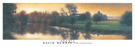 The Road Not Taken by David Wander art print