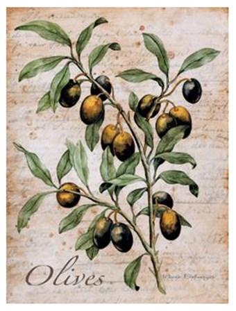 Olives by Renee Bolmeijer art print