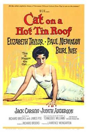 Cat on a Hot Tin Roof Elizabeth Taylor & Paul Newman art print