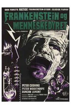 Evil of Frankenstein art print
