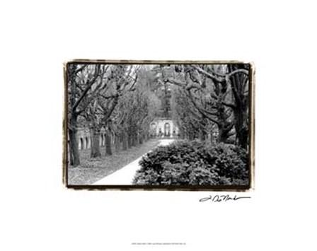 Garden Walk by Laura Denardo art print