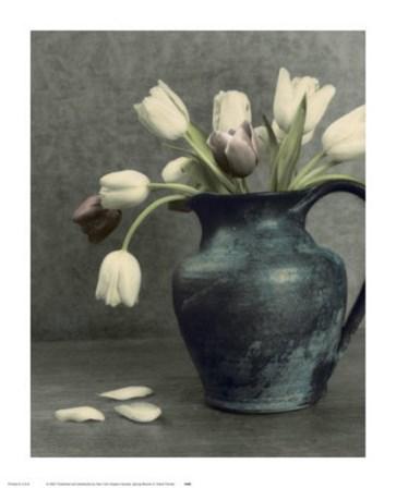 Spring Blooms II by Dianne Poinski art print