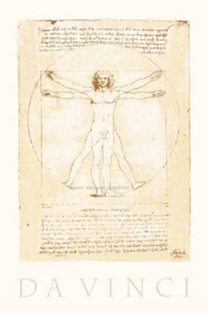The Vitruvian Man by Leonardo Da Vinci art print