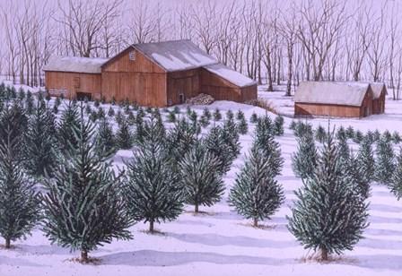 Xmas Tree Farm by Dan Campanelli art print