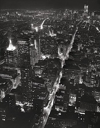 Night View of Lower Manhattan by Christopher Bliss art print