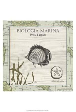 Biologia Marina I art print