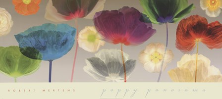Poppy Panorama by Robert Mertens art print