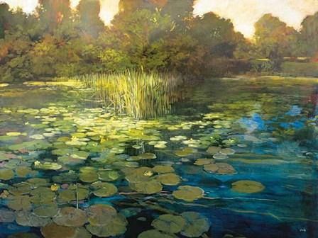 Waterlilies by Philip Craig art print