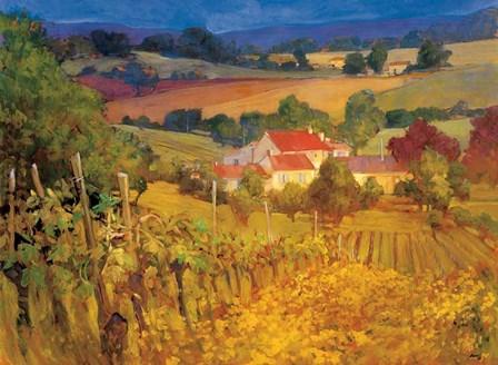 Vineyard Hill by Philip Craig art print
