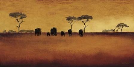 Serengeti II by Tandi Venter art print