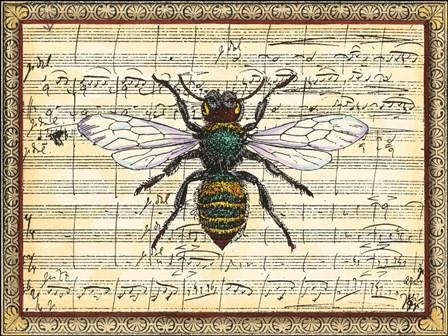 Bumblebee Harmony I by Vision Studio art print
