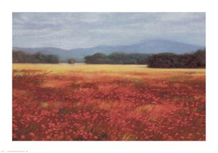 French Poppy Fields by David Schock art print