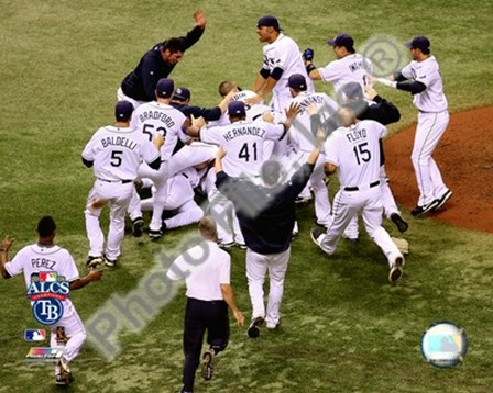 Tampa Bay Rays celebrate Game 7 of the 2008 ALCS art print