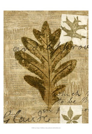 Leaf Collage I by Kate Archie art print