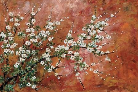 Wild Plum Blossoms by Zachary Alexander art print