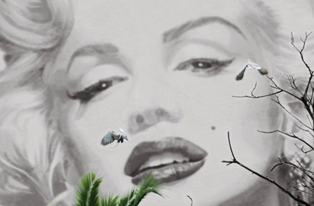 Marilyn a Cannes by Valery Hache art print