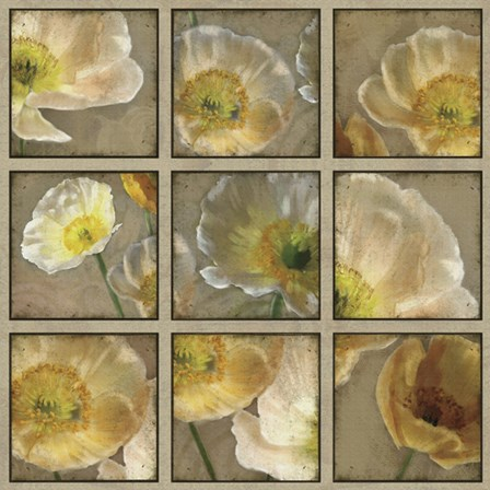 Shades of Poppies by Janel Pahl art print