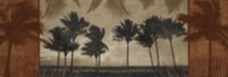 Sunlit Palms II by Harold Silverman art print