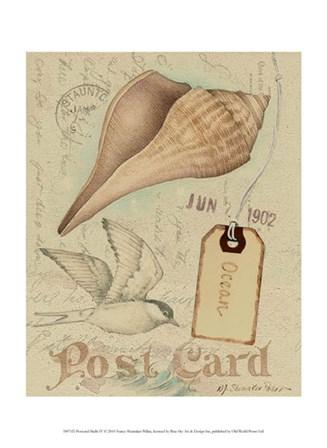 Postcard Shells IV by Nancy Shumaker art print