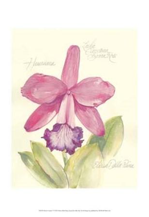 Elissa's Garden V by Elissa Della-Piana art print