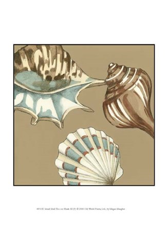 Small Shell Trio on Khaki III (P) by Megan Meagher art print